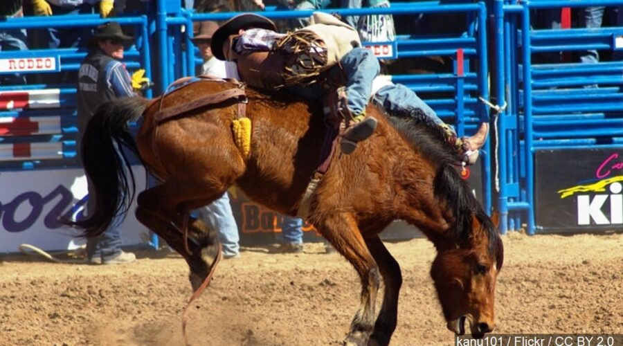 Central States Fair bringing new events in 2020