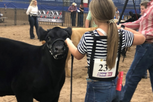 Central States Fair hosts day 2 of fleet farm youth livestock