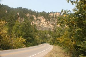The first Spearfish Canyon Fall Leaf Report of 2020