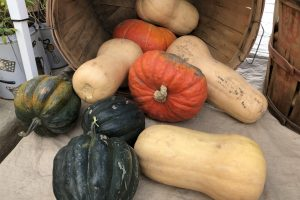 Autumn Fest hits downtown Spearfish