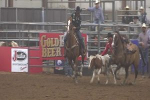 Rodeo returns: Pro Rodeo Finale at Central States Fair