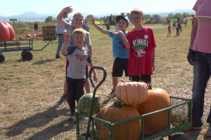 Spearfish Valley Produce holds ninth annual Corn Maze and Pumpkin Patch