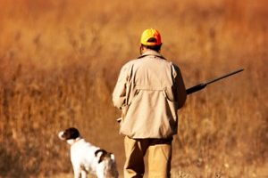 Hunters go missing in the Black Hills yearly, this is how hunters can stay safe