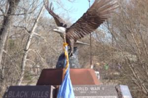 Veterans Memorial Ceremony held in Memorial Park