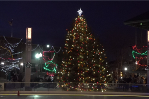 The Tree Lighting Ceremony had a few changes this year