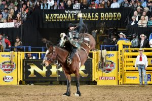 National Finals Rodeo Wraps Up its 10-day Run