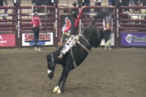 Rodeo Rapid City, Days of '76 and Black Hills Roundup win Rodeo of the Year honors