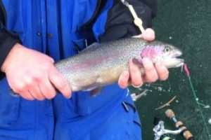 Ice fishing enthusiasts gearing up for another year on the ice