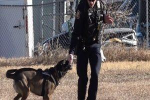 Rapid City Police Department K-9 Unit receives patrol certification