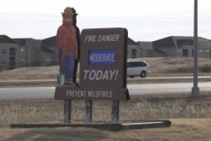 """U.S. Forest Service says rural homeowners can protect property by cleaning up """"fuel"""" for fires"""