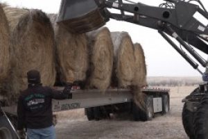 Local SD Stockgrowers Association members donate hay to help Lemmon community