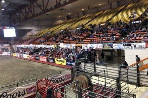Stock Show and Rodeo sees increased turnout, success for vendors, livestock sales