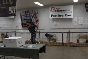 Stock Show Animal Nursery provides livestock agriculture to the public