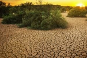 Forecast for spring: nasty drought worsens for much of US