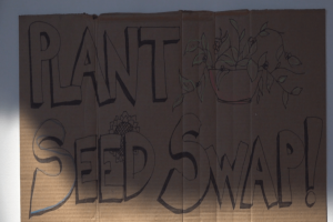 Plant and Seed Swap brings community together in time for spring cleaning and gardening