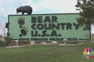 Bear Country USA opens for the 2021 season