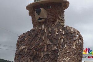 Smokey Bear keeps an eye on Hill City
