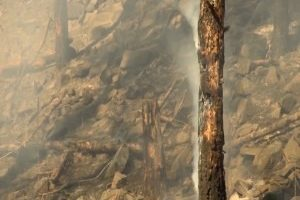 State fire officials summer forecast shows increased possibility of wildfires