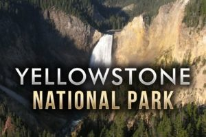 Yellowstone National Park sets tourism record for May