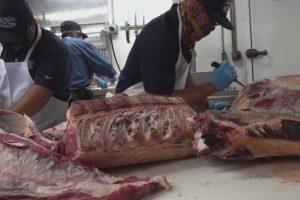 Governor Noem announces $5 Million for South Dakota meat processors