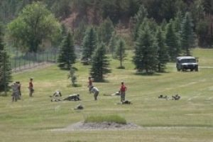 Golden Coyote exercise spurring cohesion between Army Reserve, Navy units