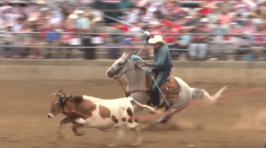 HOMEGROWN Table Talk, Episode 6: Rodeo Pros