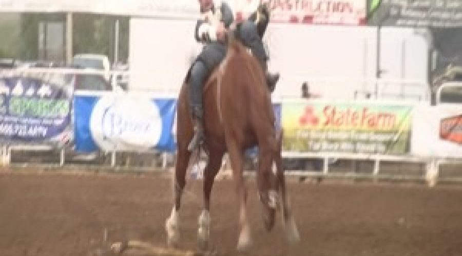 ONE CENTURY STRONG: Black Hills Roundup continues to buck on