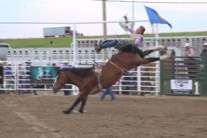 Cowboys and Cowgirls compete in the Wall Celebration PRCA Rodeo