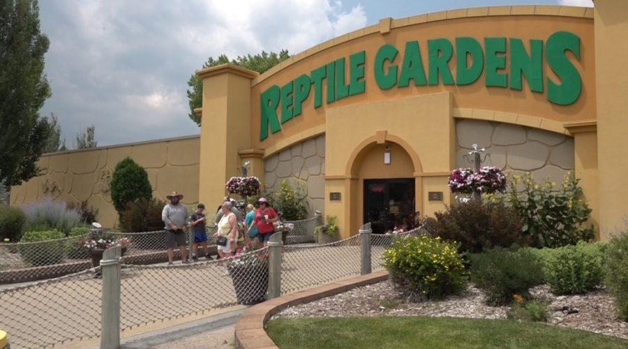 """Reptile Gardens enjoying """"record year"""", planning for new expansion"""