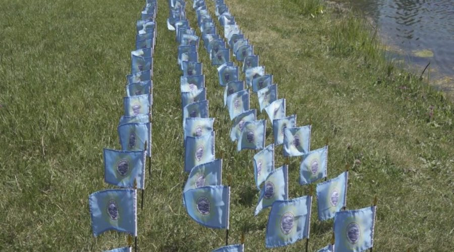 Silent vigil, 200 flags at Memorial Pond aims to remember South Dakota's COVID-19 victims