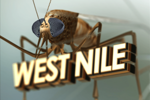 First West Nile Virus death reported for 2021