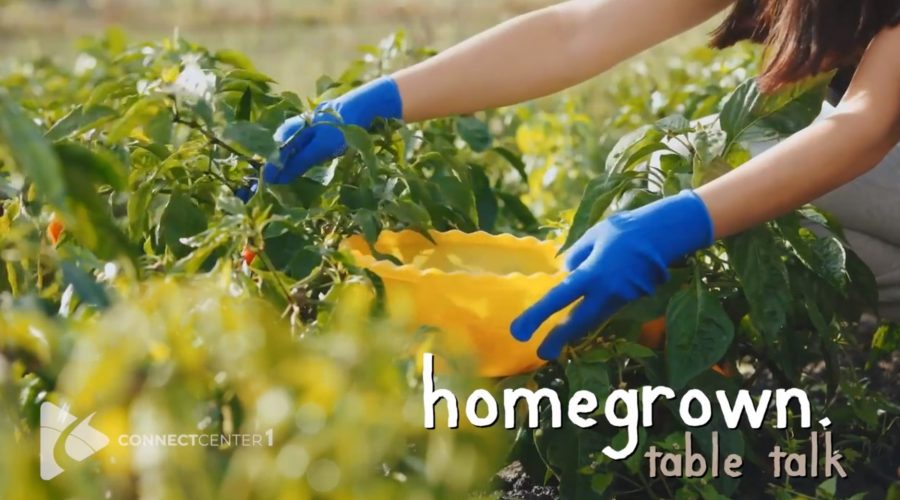 HOMEGROWN Table Talk, Episode 8: From Farm to Garden