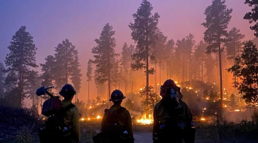 GALLERY: Crews continue work containing Kirk Hill Fire