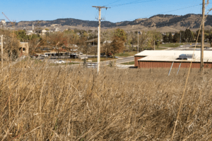 Farmers restore native grasslands as groundwater disappears